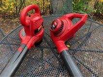 2 Electric Leaf Blowers in Wheaton, Illinois