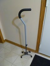 Metal Quad Walking Cane in Bartlett, Illinois
