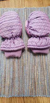 Toddler Snow Mittens and One Size Stretch Gloves in Batavia, Illinois