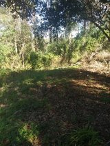 Land for sale acre and half in Dothan, Alabama