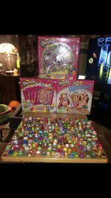 SHOPKINS in Sugar Grove, Illinois