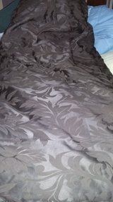 King size comforter  brown color in Moody AFB, Georgia