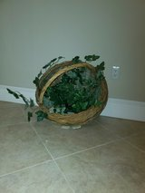 Lg basket with Ivy in Yucca Valley, California