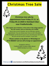 Christmas tree sale by appointment - starts 27th Nov in Ramstein, Germany