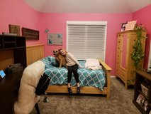 Queen bed frame and matching armoire in Wheaton, Illinois
