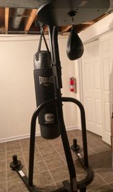 Dual station punching bag stand in Chicago, Illinois