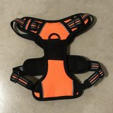 Brand New Tail Up Small Dog Harness in Fairfield, California
