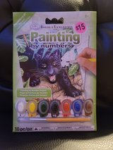 Painting by numbers black  Leopard *new* in Chicago, Illinois