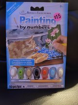 Painting by number curious kitten *new* in Chicago, Illinois