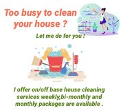 House cleaning / keeping on/off base in Okinawa, Japan