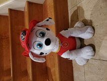 Marshall from Paw Patrol in Kingwood, Texas
