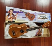 Ukelele in Chicago, Illinois