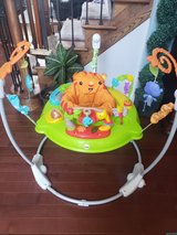 Fisher Price Jumperoo Baby Bouncer in Aurora, Illinois