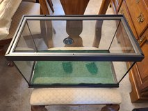 10 gallon reptile tank with screen lid in Bartlett, Illinois