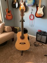12 String Acoustic/Electric Guitar in Beaufort, South Carolina