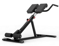 NEW back and abdominal trainer in Stuttgart, GE