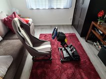 Thrustmaster force feedback steering wheel and pedal setup for PS4 in Wiesbaden, GE