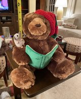 Gund Fun Storytime Bear in Yorkville, Illinois