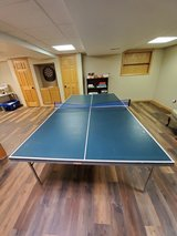Ping Pong Table in Bolingbrook, Illinois