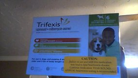 Trifexis 6 month box for dogs in Camp Lejeune, North Carolina
