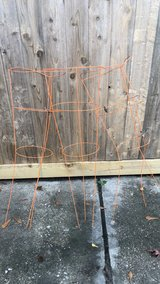 Trellis for Gardeners in Spring, Texas