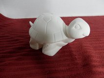 Turtle Bank ready to paint in Naperville, Illinois