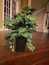 2 artificial plants in containers in Kingwood, Texas