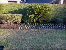 JL lawn and landscaping services in Bellaire, Texas