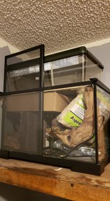 Reptile tank and setup in Fort Leonard Wood, Missouri