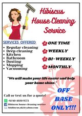 Hibiscus house cleaning service in Okinawa, Japan