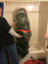 Christmas Tree in Fort Knox, Kentucky