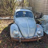 64 vw bug in Camp Lejeune, North Carolina