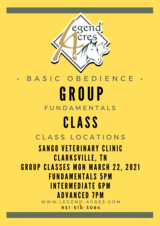 Group Classes at Sango Vet in Fort Campbell, Kentucky