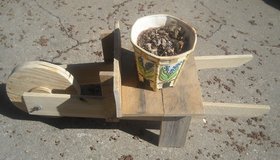Plant stand for spring in Fort Riley, Kansas