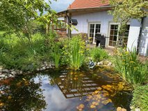 Freestanding, Single Family Home with Beautiful Garden and Pond in Grafenwoehr, GE
