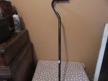 Adjustable Cane in St. Charles, Illinois