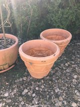 Large pots in Baumholder, GE