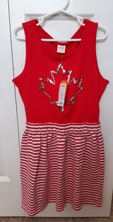 Girls size 8 Gymboree brand new tags dress in Morris, Illinois