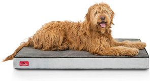 Brindle Large Memory Foam Waterproof Dog Bed - New! in Naperville, Illinois