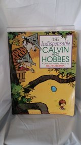 Calvin and Hobbs - Comic Book (Style) in St. Charles, Illinois