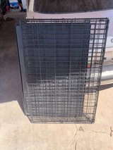 large kennel in Alamogordo, New Mexico