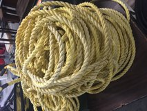 "1/2"" Rope in Pearland, Texas"