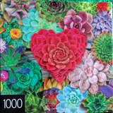 Jigsaw puzzle- Succulent Love in St. Charles, Illinois