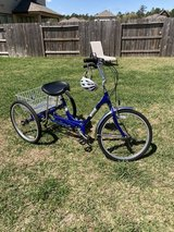 Bicycle is Tricycle in Kingwood, Texas