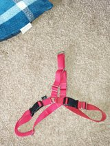 Red adjustable easy walk dog  harness in Fort Campbell, Kentucky