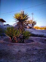 do you need some work done in 29 Palms, California