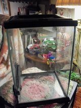 SMALL EXO TERRA REPTILE TANK in Alamogordo, New Mexico