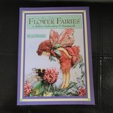 Cicely Mary Barker's Flower Fairies in Ribbon Embroidery & Stumpwork by Di van Niekerk in Naperville, Illinois