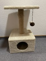 Small Cat Tree in Baumholder, GE