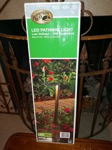 Led Low Voltage Pathway light in Spring, Texas